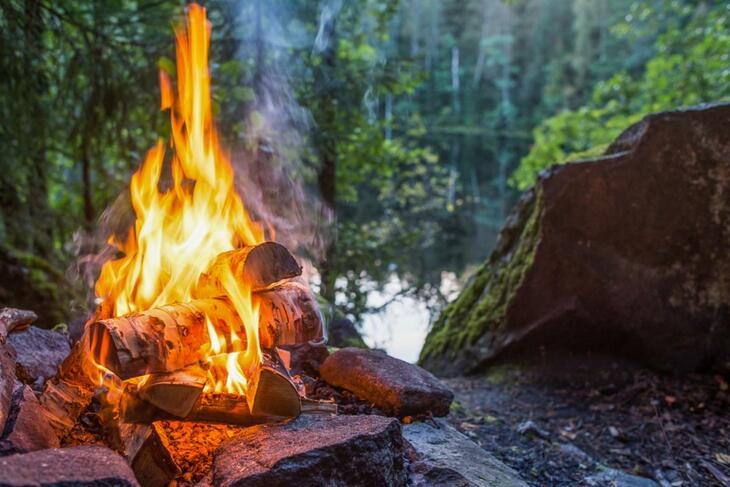 Bål i skogen